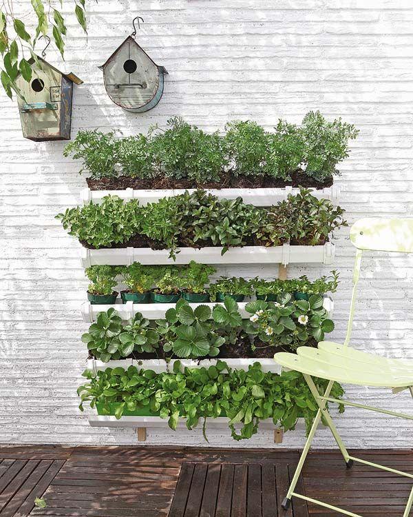 Come creare un orto cittadino in balcone o terrazzo | Entrophia